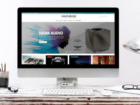 hausmusik-scene-480x360 Wok and Walk – One page website
