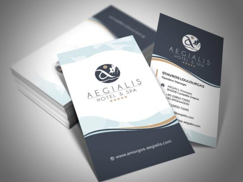 BCards_aegialis4-480x360 Wok and Walk – One page website